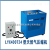LYW400T24型微型天然气压缩机
