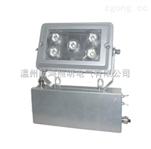 NFE9178固态应急照明灯