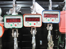 OCS新型专利1T直显遥控电子吊秤